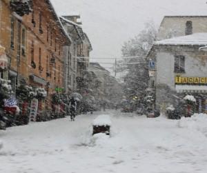 Nevicatax300