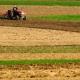 Certificati antimafia, Confagricoltura: bloccati fondi Ue per un milione di aziende agricole