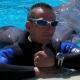 Alla piscina di Variney un tentativo di record da guinness... imitando i delfini